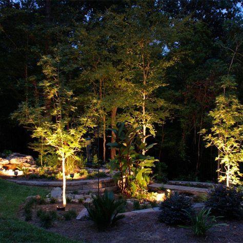 Trendy Exterior Lighting Landscape