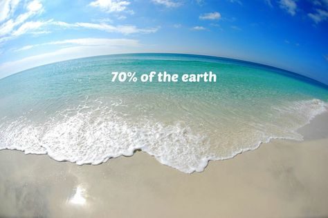 what percent of the earth is ocean