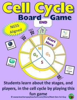 Cell Cycle Board Game: Compete to Make it Through the Cycle - NGSS