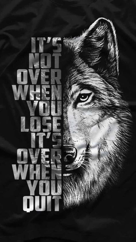 Download Wolf pack wallpaper by GodofWarpath - c8 - Free on ZEDGE™ now. Browse millions of popular big boy Wallpapers and Ringtones on Zedge and personalize your phone to suit you. Browse our content now and free your phone