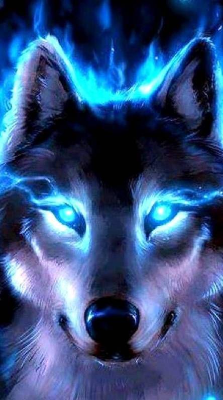 Neon Blue Wolf Wolf Wallpaper Wolf Eyes Wolf Spirit Animal