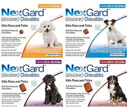 It S Flea And Tick Protection Recommended By Vets From The Makers Of Frontline Plus The 1 Choice Of Veterinarians Now Co Pet Medications Flea And Tick Dogs