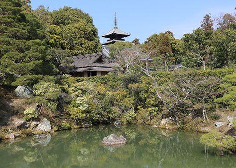 Quioto – Templos Kinkaku-ji, Daitoku-ji, Ninna-ji e Ryoan-ji | Just Lia