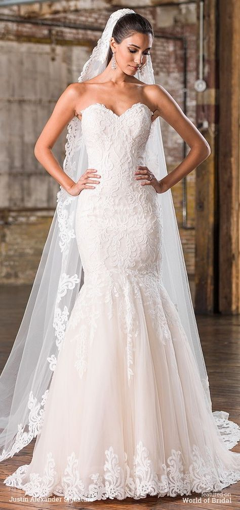 Feel sleek in this stunning fit and flare gown with a sweetheart neckline and dropped waistline with lace appliques on the body and hem. Cathedral veil style is the perfect addition to your gown with its matching applique lace trim.   Justin Alexander Signature Fall 2016 Wedding Dresses via @WorldofBridal