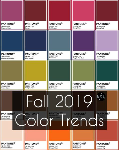 What are the fall 2019 color trends? Wardrobe Oxygen shares the hot colors for the season for clothing, shoes, jewelry, denim and more and how to wear them.