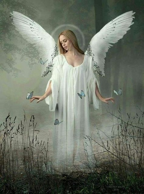 There Are Angels | Heavenletters