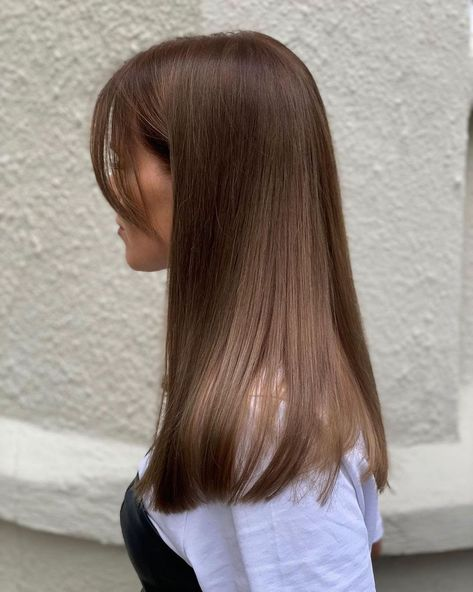 Brown Hair Balayage, Brown Blonde Hair, Dark Brunette, Straight Brunette Hair, Light Brunette Hair, Brown Hair Girls, Chesnut Brown Hair, Brown Hair Bangs, Light Chocolate Brown Hair