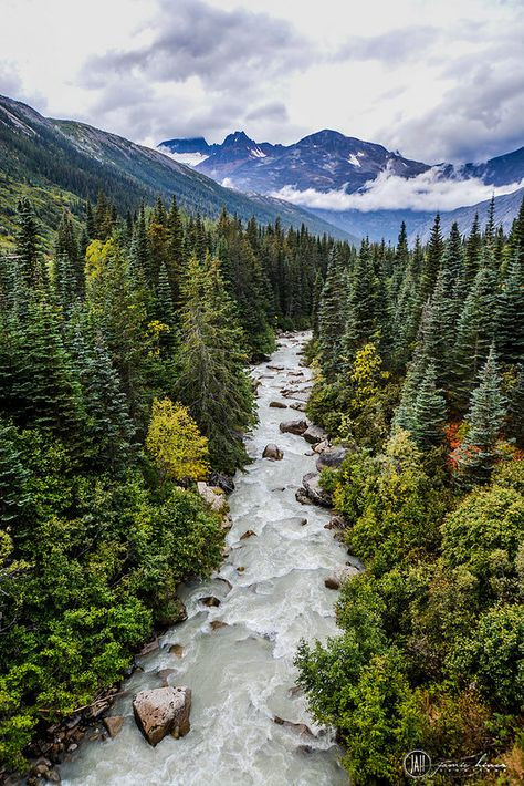 Skagway, Alaska The Effective Pictures We Offer You About Viewing ocean A quality picture can tell you many things. Alaska Travel, Travel Usa, Alaska Trip, Alaska Usa, Visit Alaska, Cruise Travel, Places To Travel, Places To Visit, Travel Destinations