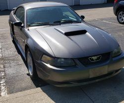 2004 Ford Mustang Gt 40th Anniversary Edition 4 6l V8 5000 Obo For Sale On Usedmustangsforsale Com 2004 Ford Mustang Mustang Gt Ford Mustang Gt