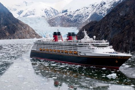 Helpful Tips for Sailing to Alaska on the Disney Wonder • Are you ready to book a Disney Cruise?  Please, e-mail me for more information.  My services are FREE  tami@goseemickey.com