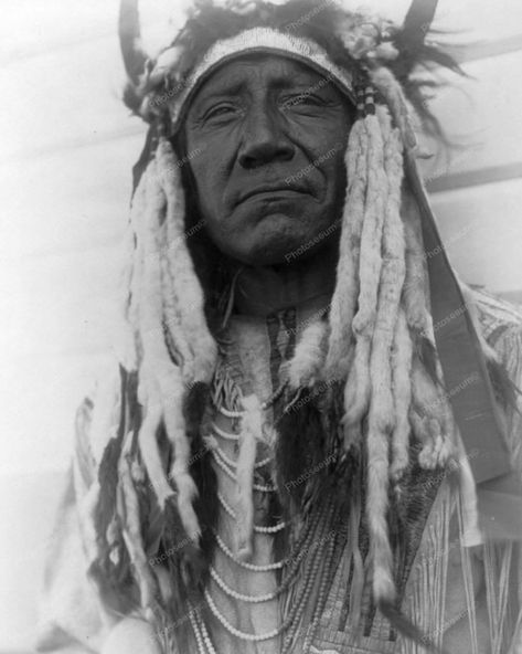 Cheyenne Indian With Bull Horns Vintage 8x10 Reprint Of Old Photo