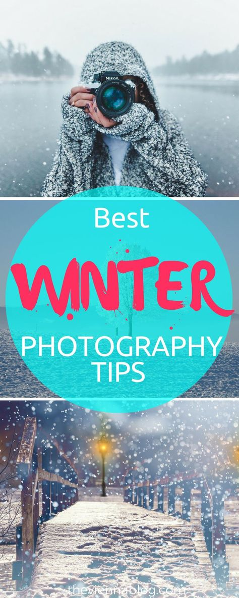 photography Winter & Snow Photography Tips...