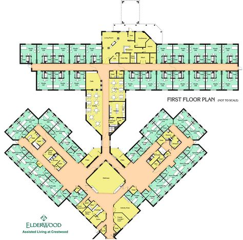 Ground Floor Plan Of Graduation Projects Varsity And Educational
