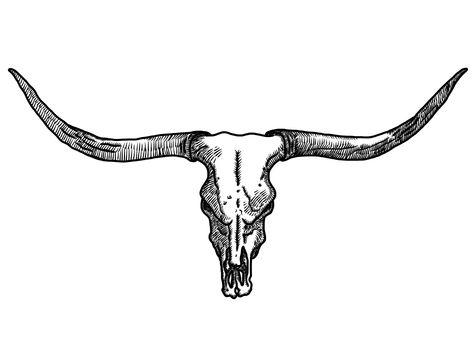 Pin By Chris Rhinehart On Texas Cow Skull Tattoos Bull Skull