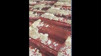 Removing Moss From Roof Naturally In 2020 Roof Cleaning Types Of Roofing Materials Organic Cleaning Products