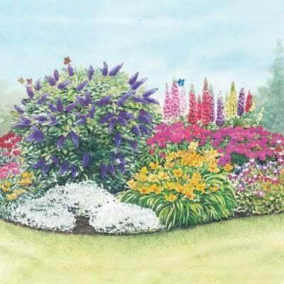 Flower Garden Designs Three Season Flower Bed Flower Garden Design Flower Garden Plans Butterfly Garden Design