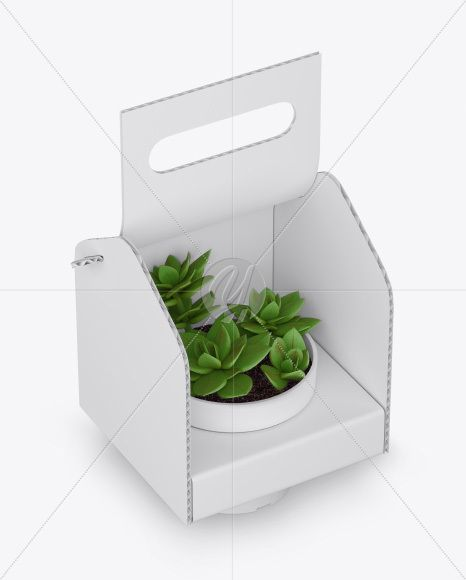 Download Box With Plant Mockup Half Side View In Box Mockups On Yellow Images Object Mockups Box Mockup Alcohol Packaging Design Creative Packaging Design