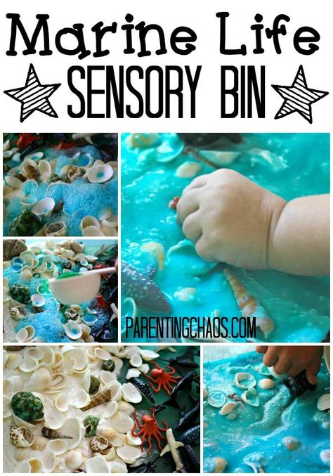 Make a marine life sensory bin to play that will have your children exploring sea creatures and scientific reactions!