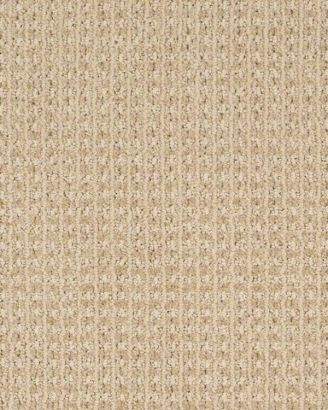 Shaw Carpet Sheer Delight Z6840 With Images Shaw Carpet Durable Carpet Buying Carpet