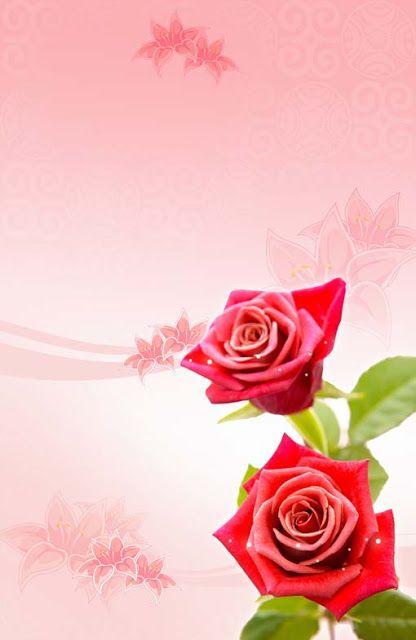 تحميل خلفية طوليه وردتين حمراء مفتوحه Psd Flowers Rose Flower Rose