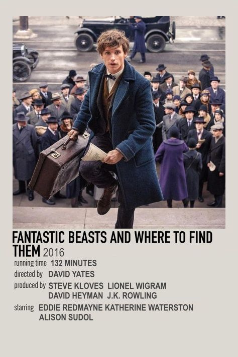 fantastic beasts and where to find them movie polaroid