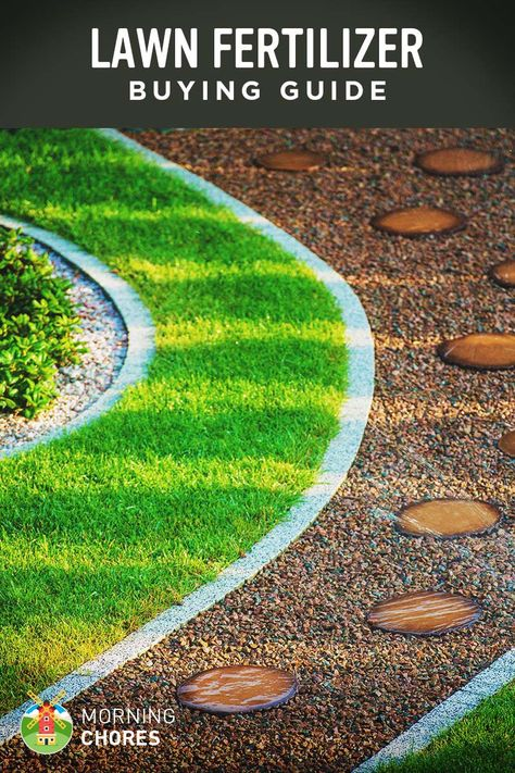 Best Lawn Fertilizer >> Best Lawn Fertilizer For Grass Buying Guide And