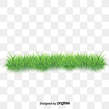 نجيل نجيل ناقلات العشب العشب الكرتون Png وملف Psd للتحميل مجانا Pink Flowers Background Grass Vector Flower Backgrounds