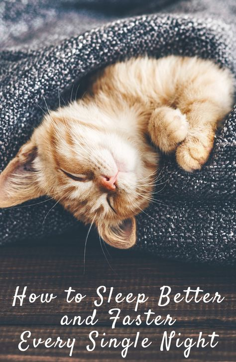 How To Sleep Better And Faster Every Single Night Infographic Cute Cats Pretty Cats Cute Cats Kittens