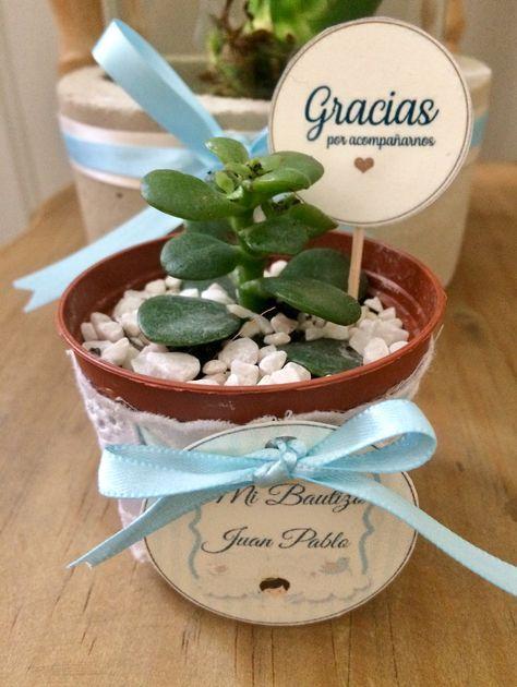 Recuerdos De Bautizo Con Cactus.Mini Maceta De Plastico Decorada Para Bautizo Con Suculenta