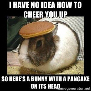 These Cheer Up Memes Are Sure To Raise A Smile Cheer Someone Up Cheer Up Funny Cheer Up Friends