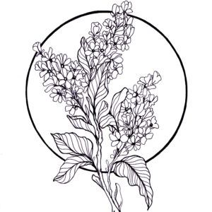 Flieder Lilacs Lilac Tattoo Tattoos Drawings