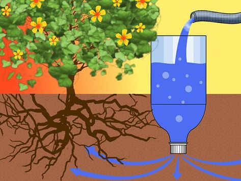 How to Make a Drip Irrigator from a Plastic Bottle