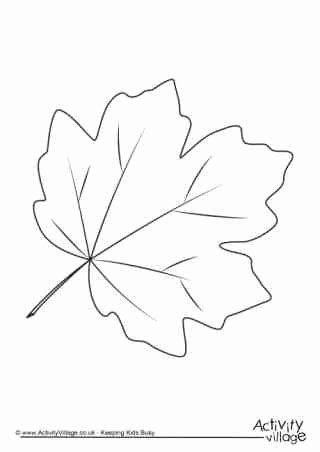 Maple Leaves Coloring Page Best Of Favorite Coloring Autumn Leaves Coloring Pages In 2020 Autumn Leaf Color Leaf Coloring Page Leaf Coloring
