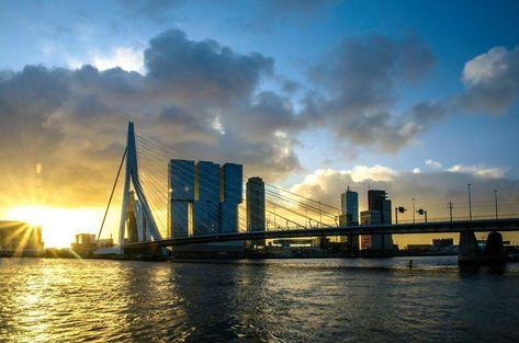 Kunstwerk: 'Zonsopgang bij de Erasmusbrug | Rotterdam' van Ricardo Bouman | Fotografie