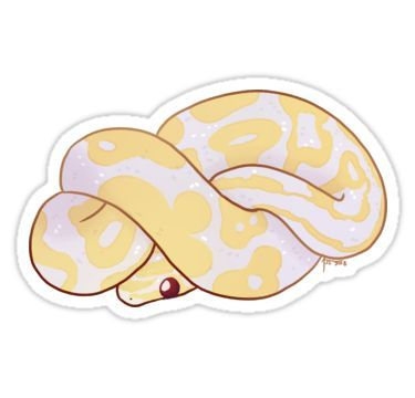 Ball Python Genevieve Sticker By Andrea Sutinen With Images
