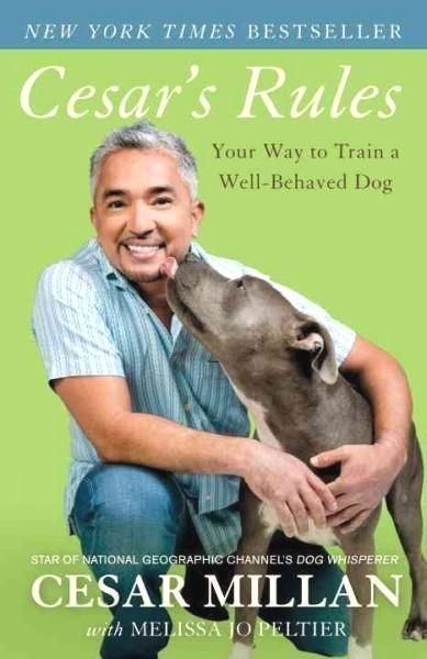 Dog Training Boot Camp Click The Pic For Various Dog Obedience