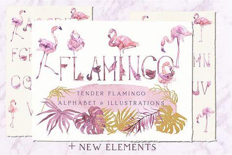 Tender Flamingo Watercolor Alphabet