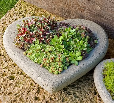 gift ideas for garden