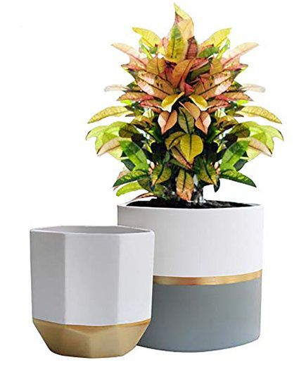 Best Indoor Plant Pots From Amazon That Are Actually Pretty Ceramic Flower Pots Indoor Plant Pots Flower Pots