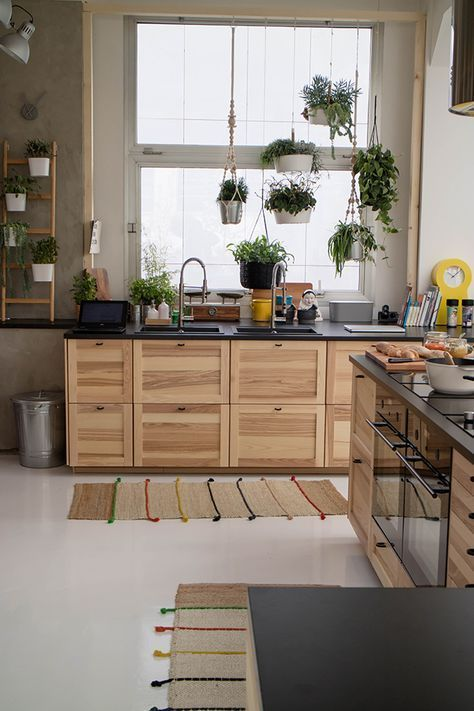 Pin By Ian Burch On Kitchen Remodel Kitchen Design Small Home Kitchens Rental Kitchen