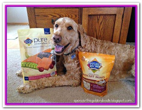 Best Dry Dog Food For Goldendoodles Taste Of The Wild Grain Free