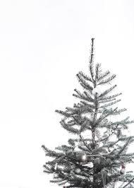 Image Result For White Christmas Aesthetic Christmas Tree Wallpaper Christmas Tree Wallpaper Iphone Wallpaper Iphone Christmas