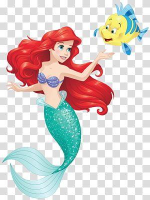 Disney Little Mermaid Illustration Ariel Sebastian Belle The Little Mermaid Mermaid Tran Mermaid Illustration Disney Princess Pictures Disney Little Mermaids