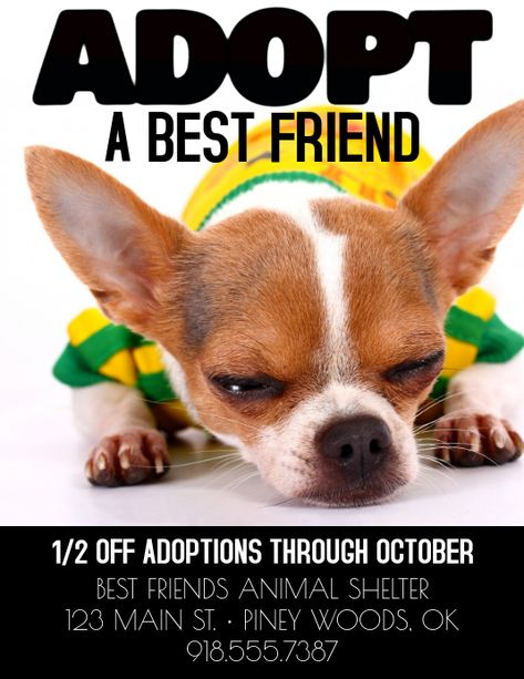 Customize This Design With Your Video Photos And Text Easy To Use Online Tools With Thousands Of Stock Phot In 2020 With Images Pet Adoption Best Friends Animal Shelter Adoption