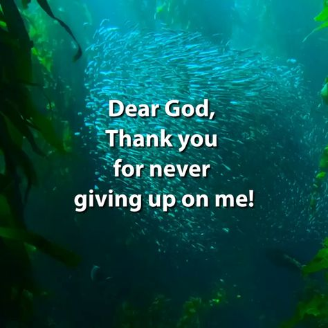 The next time you feel like giving up on a relationship, remember and be thankful that God has not given up on you! #christianquotes #encouragementquotesforwomenchristian #2020quotesinspirational #beautifulquotesinspirational #biblequotesinspirational #inspirationalquotesmotivationencouragement #inspirationalquotesshort #inspirationalquotesaboutchange #selfgrowthquotes #selfmotivationquotes #quotesaboutselfgrowth #selfdevelopment #selfimprovementquotes #mequoteinspire #selfquotes