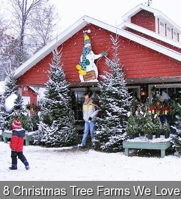 8 Christmas Tree Farms We Love 568080 Christmas Tree Ideas Christmastreeideas Families Savor The Crunch Of The Snow The Sound Of The Saw 2020 Noel Agaci Agac