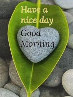 Good Morning Images Good Morning Good Morning Images Cute Good Morning Images