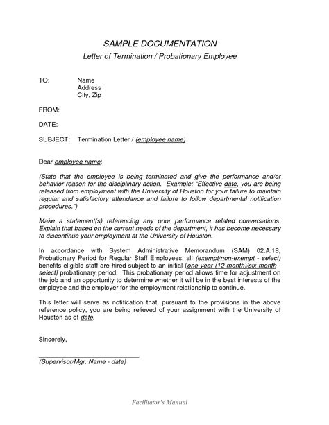 Free Sample Termination Letter Resume Cover American Apparel Ceo