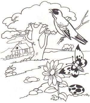 Resultado De Imagen Para Imagenes De Plantas Arboles Y Animales