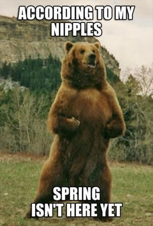 20 Very Funny Spring Memes Funny Weather Funny Nerd Jokes